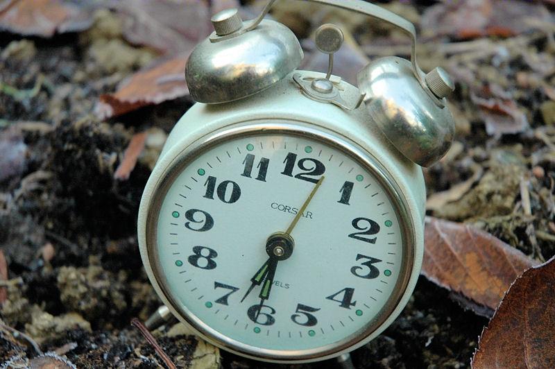 Boden braucht Zeit