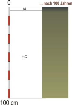 Grafik Bodentyp: Syrosem