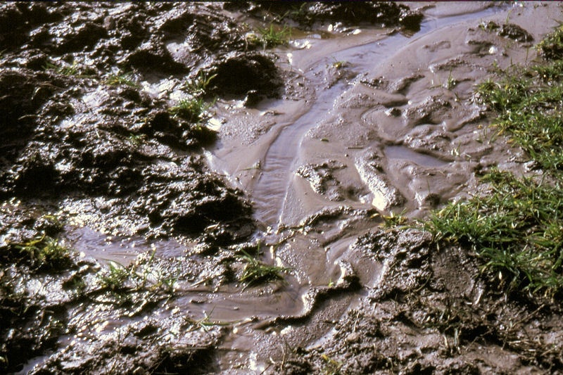Wassererosion