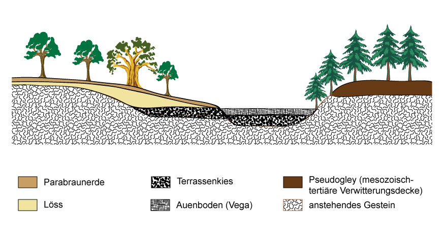 Bodengesellschaft