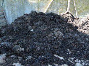 In einer dritten Box befindet sich der fertige Kompost. ©Ewald Langenscheidt