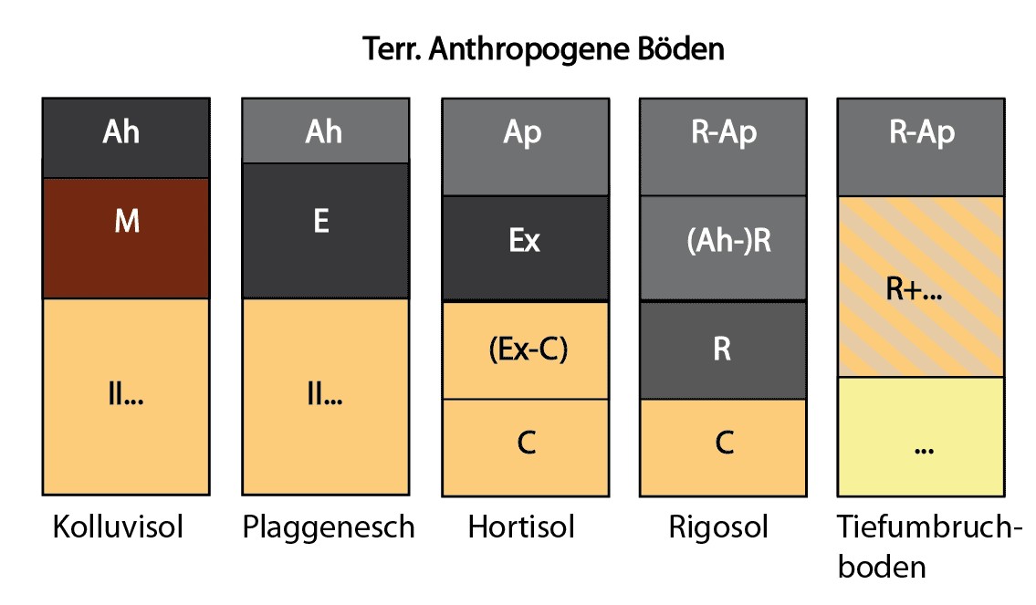 Anthropogene Böden