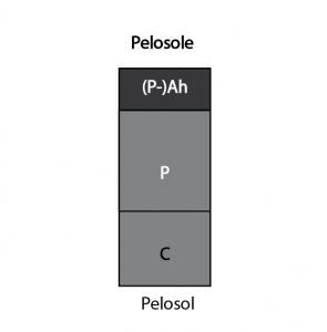 Pelosole
