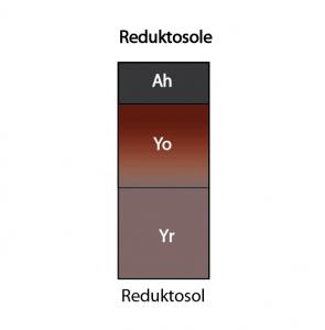 Reduktosole