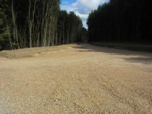 Bodenzerstörung im Wald