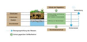 Der Boden als Schadstofffilter