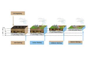 Der Boden als Wasserspeicher