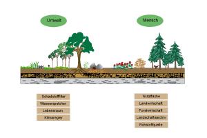 Der Boden und seine Leistungen