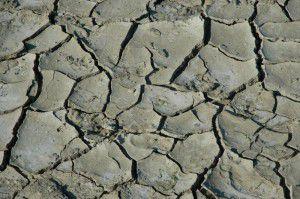 Boden und Klimawandel