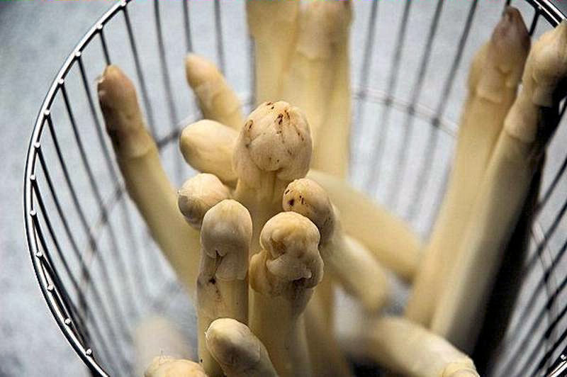 Gemüsespargel