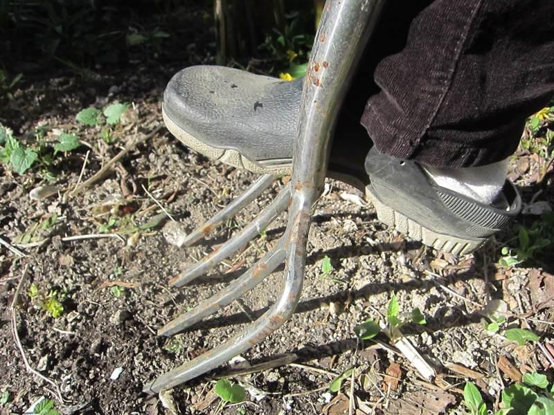 Zehn grunds tzliche fragen zum gartenboden for Boden umgraben