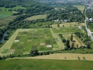 Luftbildaufnahme des Jena Experiments
