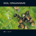Soil Organisms: Das wissenschaftliche Journal des Senckenberg Museums für Naturkunde Görlitz