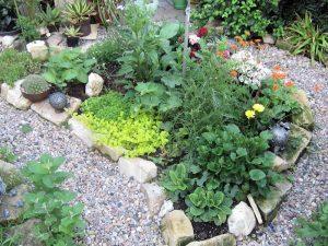 Für Boden und Pflanze: Jauchen, Brühen, Auszüge & Co