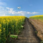 """""""Spot an"""": Beim Spot-Farming sorgen Mini-Roboter für das Wohlergehen von Pflanzen und Boden"""