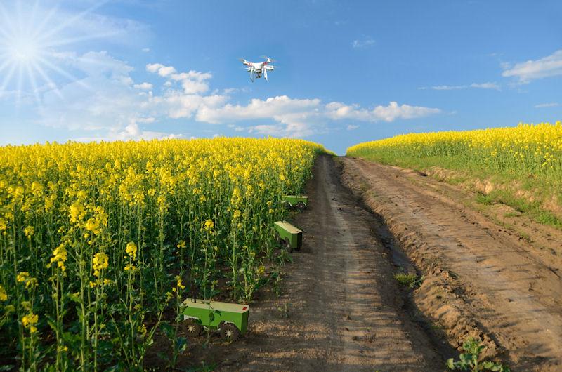 Mini-Roboter und Drohne