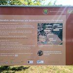 Der Bodenerlebnispfad Flintsbach
