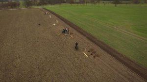 Baumpflanzaktion auf einer Agroforstfläche
