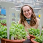Bodenzusammensetzung: Wie sich Pflanzen an vielfältige Umweltbedingungen anpassen