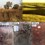 Verwitterung und Bodenentwicklung als Bühne des biologischen Kohlenstoffkreislaufs?