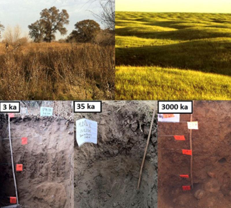 Die Arbeiten wurden an Böden einer Sequenz von Flussterrassen im kalifornischen Central Valley durchgeführt