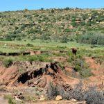 Den Landverlust und die Bodenerosion genau im Blick