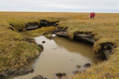 Warum Permafrost früher auftauen könnte als bislang angenommen